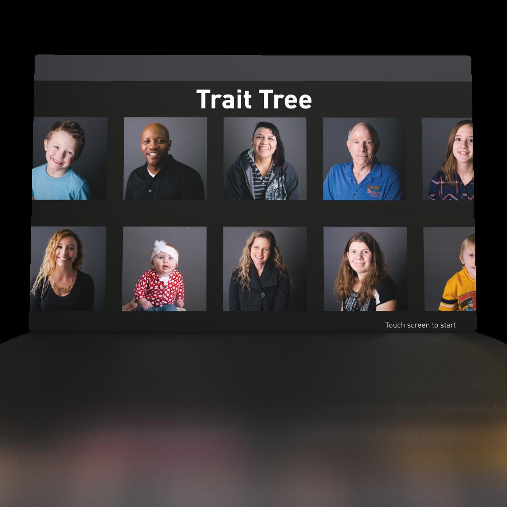 Trait Tree – Display Interactive